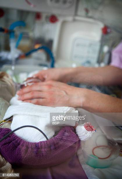 Mobile functional exploration unit A nurse intervenes in a neonatal service to carry out a checkup EEG on some premature babies The EEG enables the...
