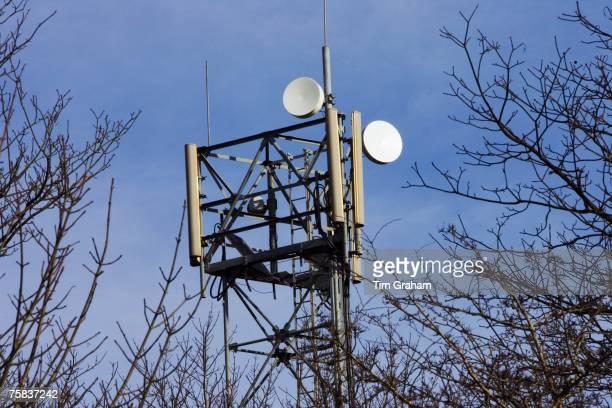 Mobile phone mast Shipton Under Wychwood The Cotswolds United Kingdom