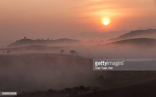 moc chau plateau on sunrise - vietnam - travel destination - son la stock pictures, royalty-free photos & images