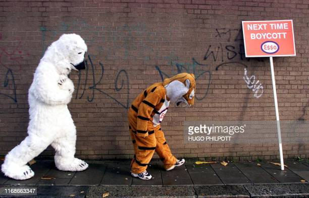 A mock polar bear chases the Esso tiger 01 December 2001 during a Greenpeacesponsored demonstration at an Esso gasoline station in West London...