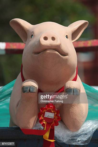 Mock up of a pig in a trough, driven by British National Party campaigners, drives past the home of Labour minister Hazel Blears as BNP candidate...