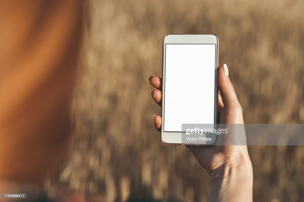 Mock up of the smartphone in the hand of the girl, on the background of the field. : Stock Photo