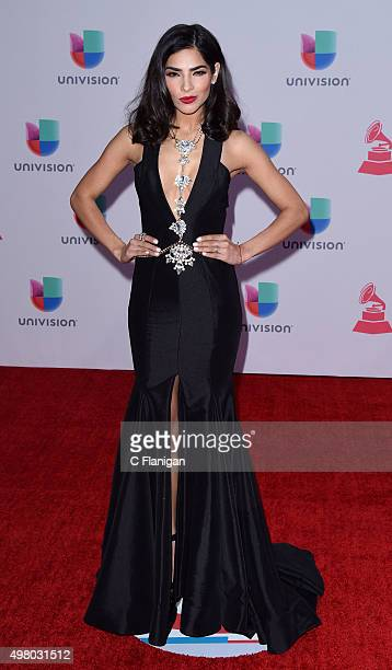 Model Alejandra Espinoza attends the 16th Annual Latin GRAMMY Awards at the MGM Grand Garden Arena on November 19 2015 in Las Vegas Nevada