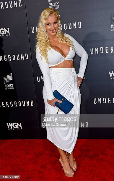 Model Amanda Moore arrives for the premiere of Premiere Of WGN America's 'Underground' held at The Theatre at The Ace Hotel on March 2 2016 in Los...
