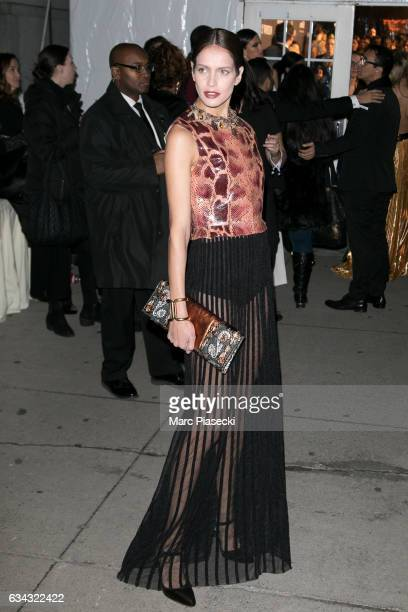 Model Amanda Wellsh attends the 19th Annual amfAR New York Gala at Cipriani Wall Street on February 8 2017 in New York City