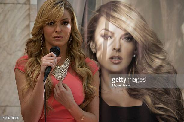 Model and actress Marjorie De Sousa of Venezuela talks with the media during a press conference to promote the magazine Open on January 14 2014 in...