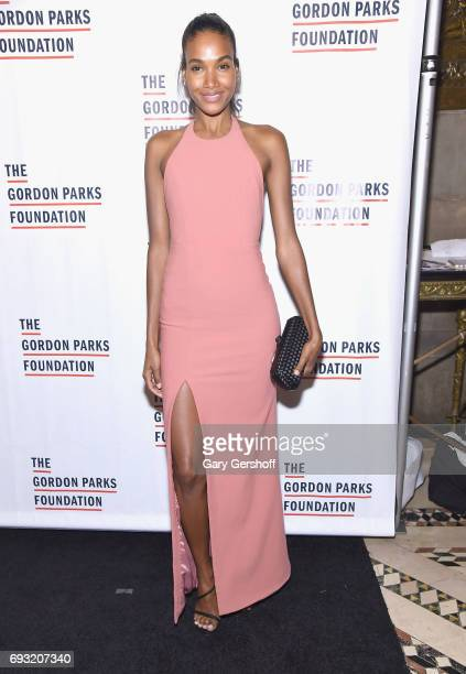 Model Arlenis Sosa attends the 2017 Gordon Parks Foundation Awards gala at Cipriani 42nd Street on June 6 2017 in New York City