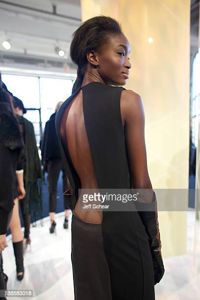 A model attends the Monika Chiang fall 2012 presentation during MercedesBenz Fashion Week at the Stanley Kaplan Penthouse on February 9 2012 in New...