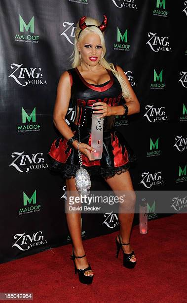 Model Bobbi Billard appears at the ZING Vodka's Las Vegas Launch Party at Sacramento Kings coowner Gavin Maloof's home on October 30 2012 in Las...