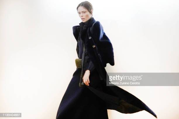 Model Coco Rocha prepares backstage before the Akris show as part of the Paris Fashion Week Womenswear Fall/Winter 2019/2020 on March 03, 2019 in...