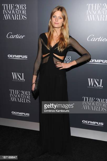 Model Constance Jablonski attends the WSJ Magazine's Innovator Of The Year Awards 2013 at The Museum of Modern Art on November 6 2013 in New York City