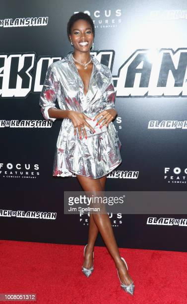 Model Damaris Lewis attends the 'BlacKkKlansman' New York premiere at Brooklyn Academy of Music on July 30 2018 in New York City