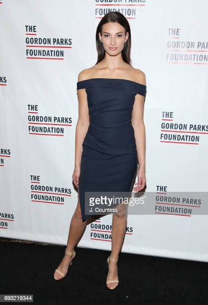 Model Dana Taylor attends the 2017 Gordon Parks Foundation Awards Gala at Cipriani 42nd Street on June 6 2017 in New York City