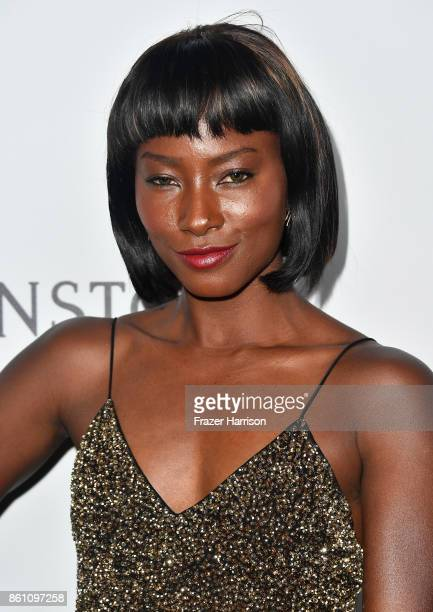 Model Deddeh Howard attends the amfAR Gala at Ron Burkle's Green Acres Estate on October 13 2017 in Beverly Hills California
