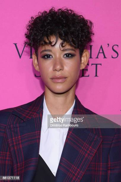 Model Dilone attends as Victoria's Secret Angels gather for an intimate viewing party of the 2017 Victoria's Secret Fashion Show at Spring Studios on...
