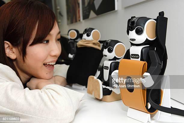 A model displays robotshaped mobile phone 'RoBoHon' during a press conference on April 14 2016 in Tokyo Japan Designed by robot creator Tomotaka...
