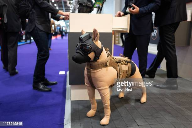 Model dog wears a protective helmet and MOHOC camera system on day one of the DSEI arms fair at ExCel on September 10, 2019 in London, England. The...