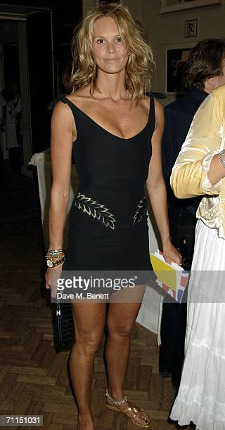 Model Elle Macpherson attends the champagne reception launching the world's oldest and largest open art competition and exhibition at the Royal...