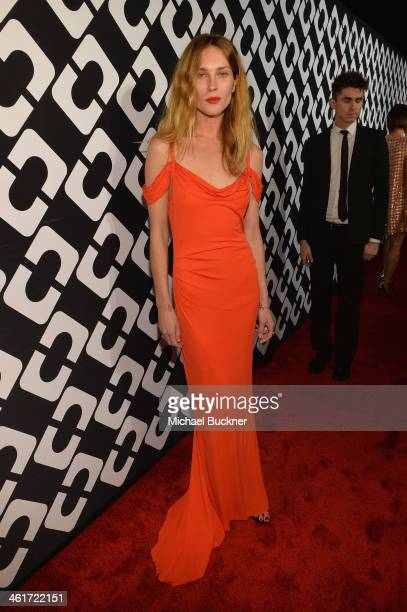 Model Erin Wasson attends Diane Von Furstenberg's Journey of A Dress Exhibition Opening Celebration at May Company Building at LACMA West on January...
