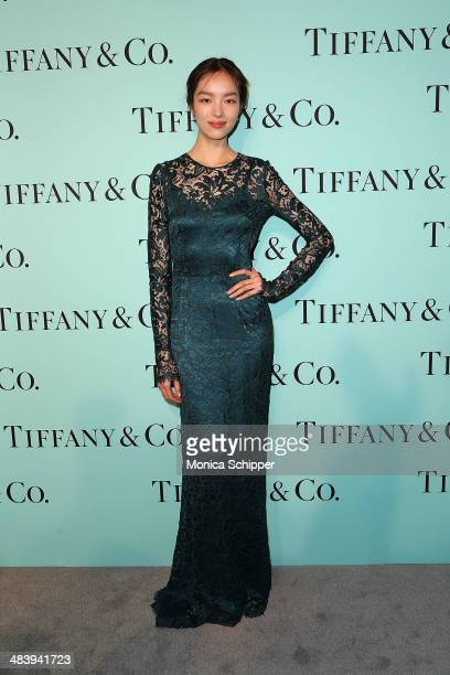 Model Fei Fei Sun attends the 2014 Tiffany's Blue Book Gala at the Guggenheim Museum on April 10, 2014 in New York City.