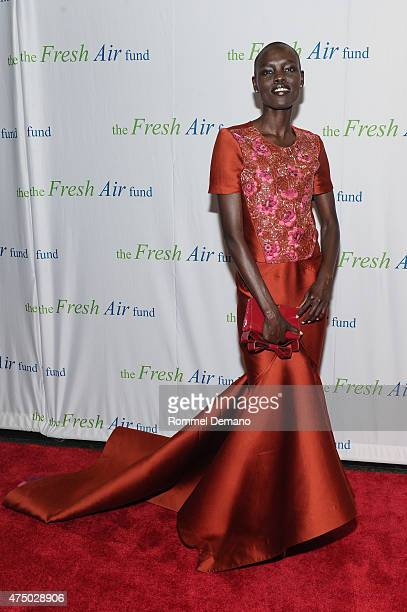 Model Grace Bol attends Fresh Air Fund's Salute to American Heroes at Pier Sixty at Chelsea Piers on May 28 2015 in New York City