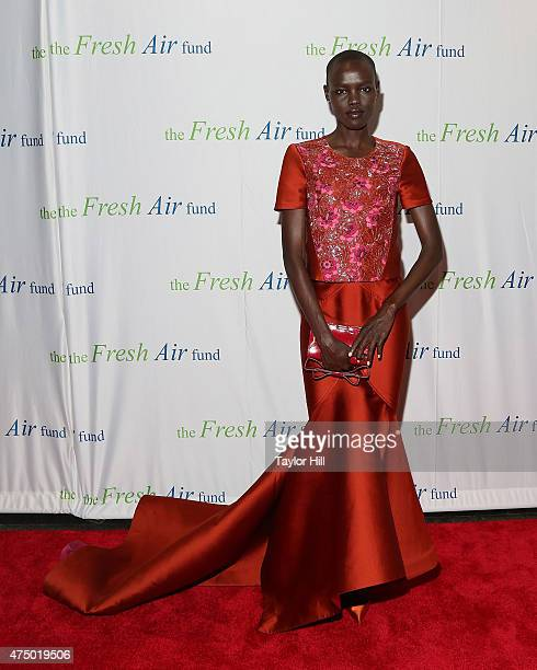 Model Grace Bol attends the 2015 Fresh Air Fund's Salute To American Heroes at Pier Sixty at Chelsea Piers on May 28, 2015 in New York City.