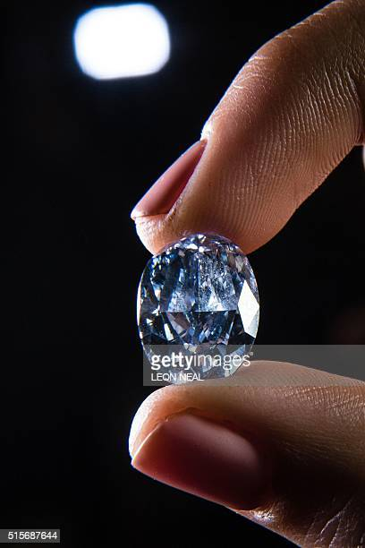 Model holds the De Beers Millennium Jewel 4, a rare Oval Internally Flawless Fancy Vivid Blue Diamond weighing 10.10 carats the largest oval fancy...