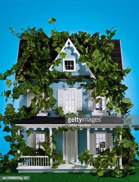 Model house covered in ivy, close-up