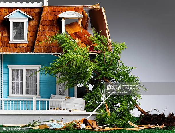model house damaged by fallen tree, close-up - fallen tree stock pictures, royalty-free photos & images