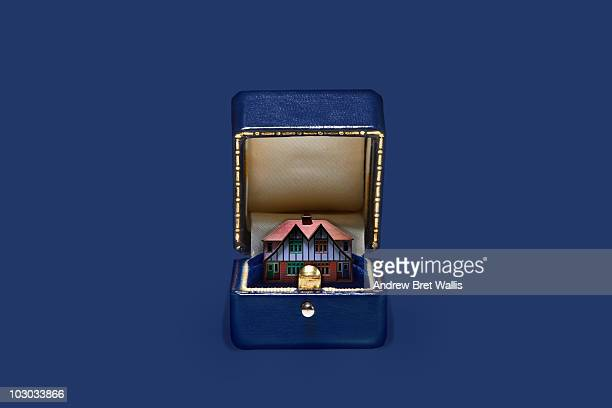 model house inside an opened blue jewellery box
