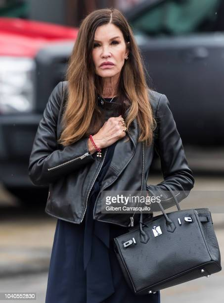 Model Janice Dickinson is seen walking outside the Montgomery County Courthouse prior to Bill Cosby's Sentencing for sexual assault conviction at the...