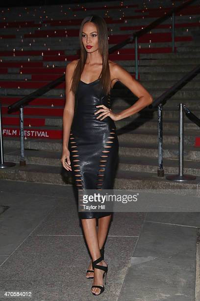 Model Joan Smalls attends the 2015 Tribeca Film Festival Vanity Fair Party at the New York Supreme Court on April 14 2015 in New York City