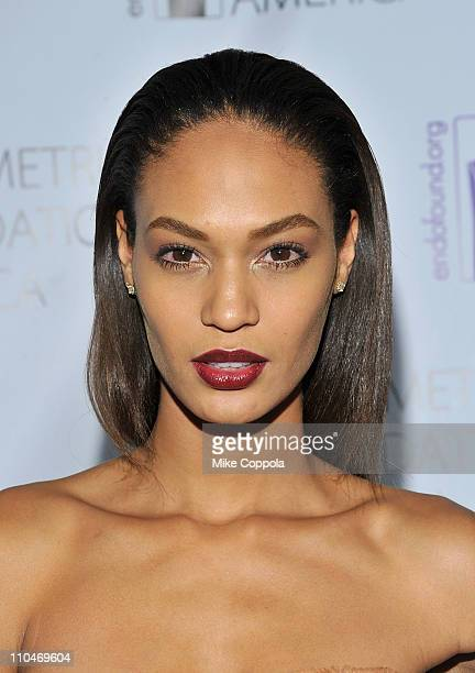 Model Joan Smalls attends the Endometriosis Foundation of America's 3rd Annual Blossom Ball at the New York Public Libaray on March 18 2011 in New...