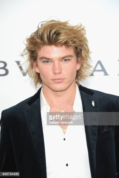 Model Jordan Barrett attends Bulgari at the 25th Annual Elton John AIDS Foundation's Academy Awards Viewing Party at on February 26 2017 in Los...