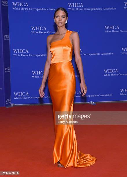 Model Lais Ribeiro attends the 102nd White House Correspondents' Association Dinner on April 30 2016 in Washington DC