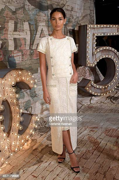 Model Lily Aldridge attends the CHANEL Dinner Celebrating N°5 THE FILM by Baz Luhrmann on October 13, 2014 in New York City.