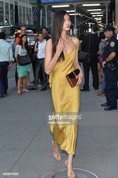 Model Liu Wen attends the Happy Hearts Fund 10 Year Anniversary Tribute of the Indian Ocean Tsunami at Cipriani 42nd Street on June 19 2014 in New...