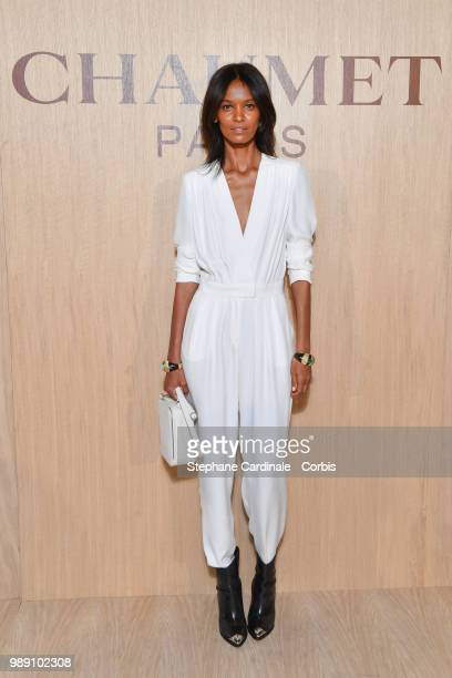 Model Liya Kebede attends the 'Tresors d'Afrique' Unvelling Of Chaumet High Jewelry Party as part of Haute Couture Paris Fashion Week on July 1 2018...