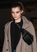 new york ny model michelle van