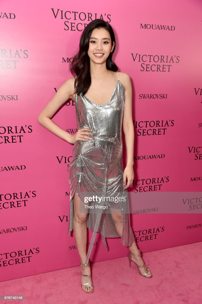 2017 Victoria's Secret Fashion Show In Shanghai - After Party