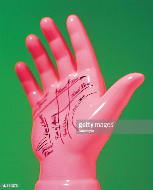Model of hand with palmistry notation