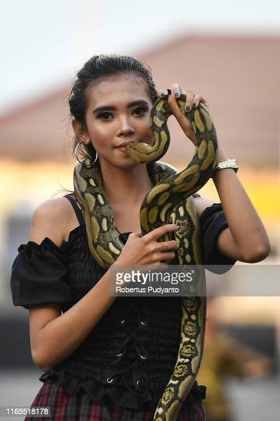 A model performs with a snake during Pets Carnival as part of the 18th Jember Fashion Carnival 2019 on August 01 2019 in Jember Indonesia The 18th...