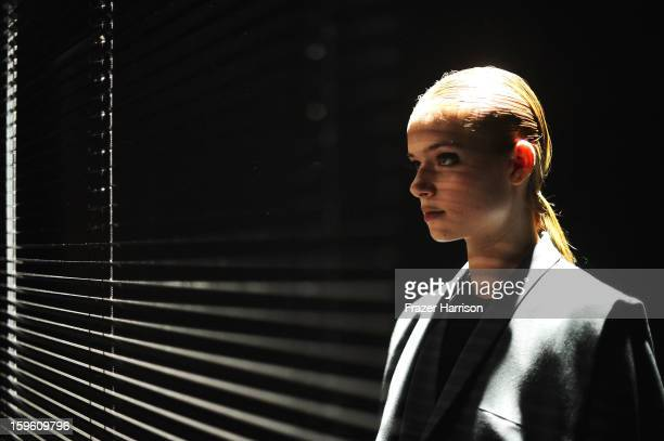 Model Poses at Isabell De Hillerin Autumn/Winter 2013/14 fashion show during Mercedes-Benz Fashion Week Berlin at Brandenburg Gate on January 17,...