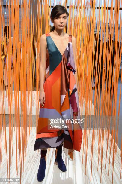 A model poses for Tanya Taylor presentation during New York Fashion Week The Shows at Gallery II at Spring Studios on February 11 2018 in New York...