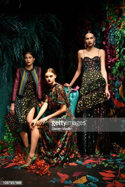 A model poses for the Alice Olivia By Stacey Bendet presentation during New York Fashion Week The Shows at The Angel Orensanz Foundation on February...