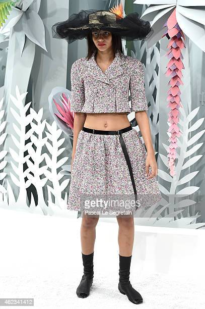 A model poses on the runway during the Chanel show as part of Paris Fashion Week Haute Couture Spring/Summer 2015 on January 27 2015 in Paris France