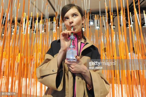 A model poses with Evian water during the Tanya Taylor presentation in Gallery II during IMG NYFW The Shows at Spring Studios on February 11 2018 in...