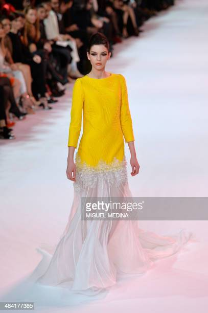 A model presents a creation by Stephane Rolland during the Haute Couture SpringSummer 2014 collection show on January 21 2014 in Paris AFP PHOTO /...