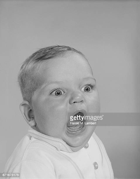 """model released baby, studio"" - number of people stock pictures, royalty-free photos & images"