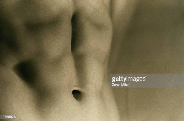 Man''s stomach showing abdominal muscles closeup